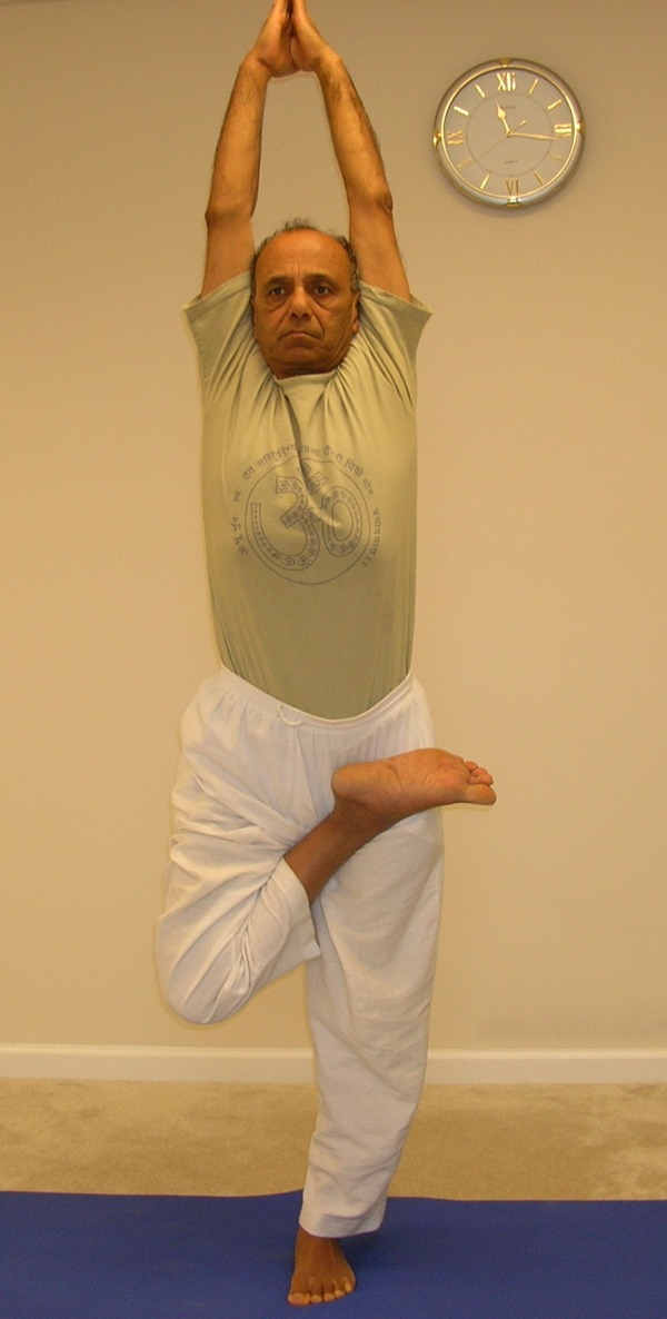 Half-lotus tree pose